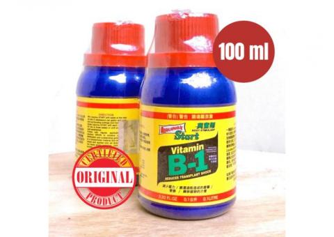 Vitamin B1 Tanaman Taiwan 100ml Original