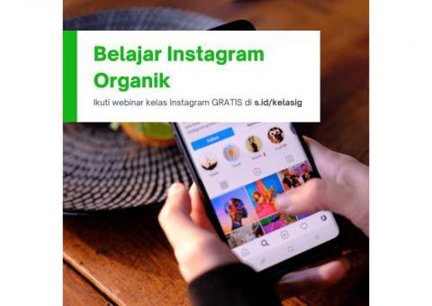 Webinar Gratis Cara Meningkatkan 10,000 Follower Organik