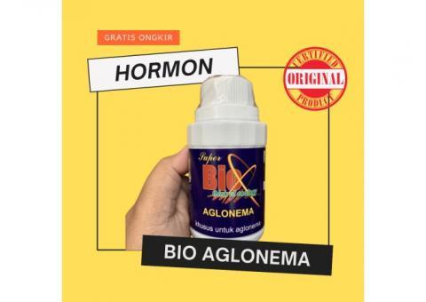 SUPER BIO HORMON AGLONEMA